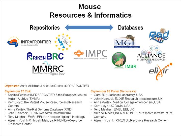 mouseinformatics