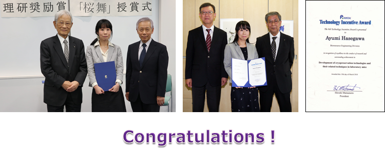 FY2017 RIKEN Technology Incentive Award was given to Ms. Ayumi Hasegawa.
